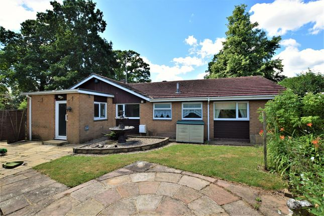 Thumbnail Detached bungalow to rent in Peterborough Avenue, Oakham