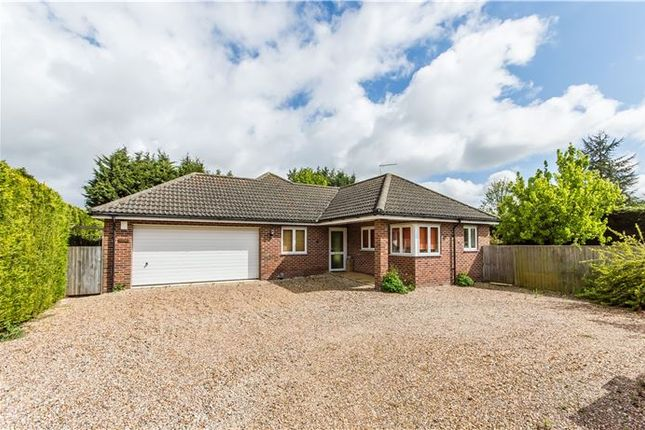 Thumbnail Detached bungalow for sale in Station Road, Willingham, Cambridge