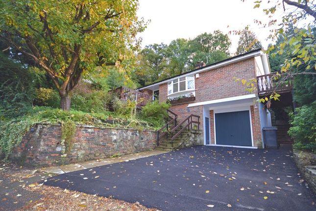 Thumbnail Bungalow to rent in Beech Hill Road, Headley, Bordon
