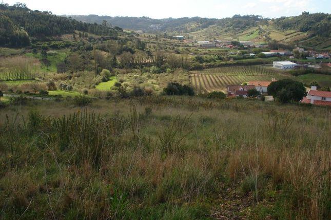 Properties For Sale In Santa Catarina Caldas Da Rainha