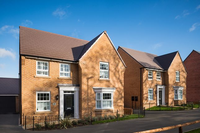 "Thumbnail Detached house for sale in ""Holden"" at Main Road, Earls Barton, Northampton"