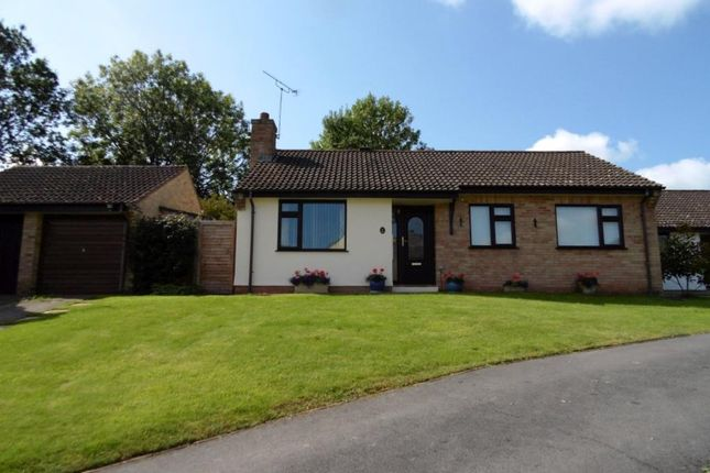 Thumbnail Detached bungalow for sale in Westernlea, Crediton, Devon