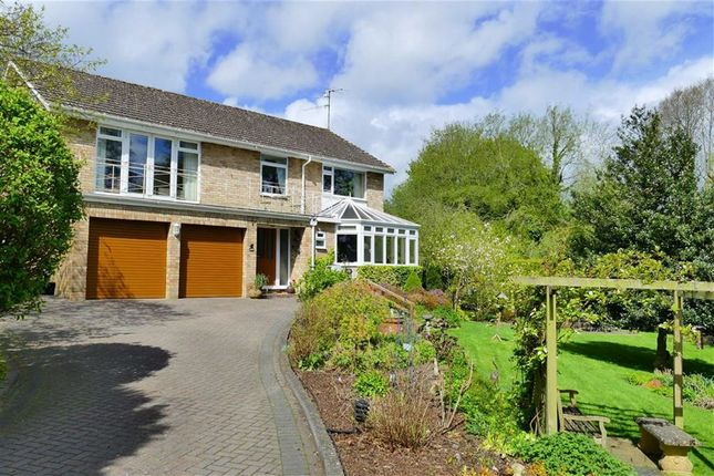 Thumbnail Detached house for sale in Wessington Park, Quemerford, Calne