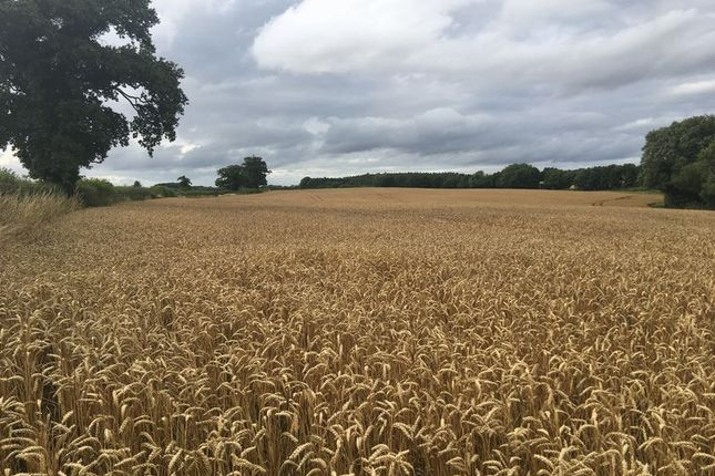Property for sale in Land Off Knightley Road, Hollies Common, Gnosall