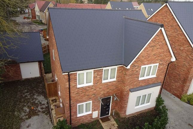 Thumbnail Detached house for sale in Taylor Close, Harlow, Essex