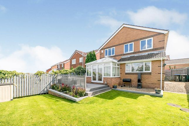 Thumbnail Detached house for sale in Eastwood, Sacriston, Durham