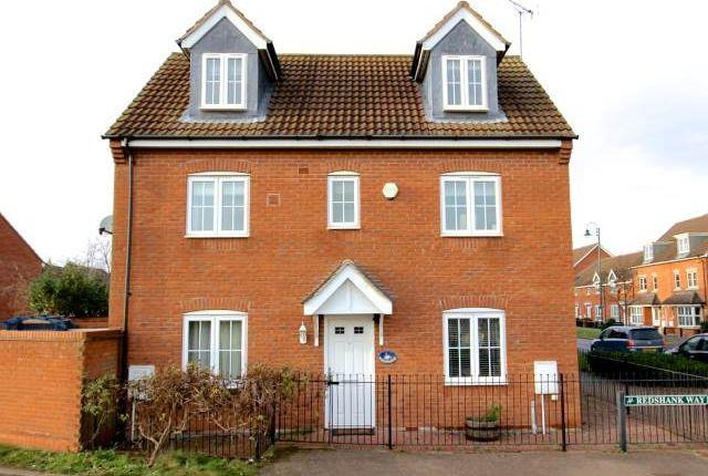 Thumbnail Detached house to rent in Redshank Way, Hampton Vale, Peterborough