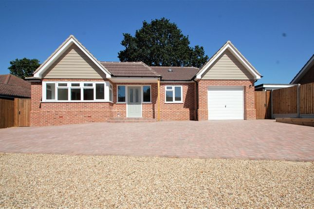 Thumbnail Detached bungalow for sale in Mount Lodge Chase, Great Totham, Maldon
