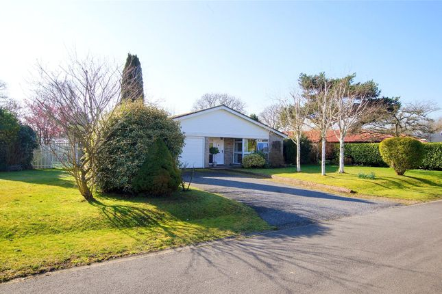 Thumbnail Bungalow for sale in Greenacres, Birdham, Chichester, West Sussex