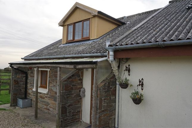 Thumbnail Semi-detached house to rent in Rhosfach, Clynderwen, Pembrokeshire