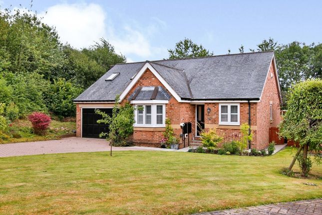 Thumbnail Detached house for sale in Lowes Rise, Durham