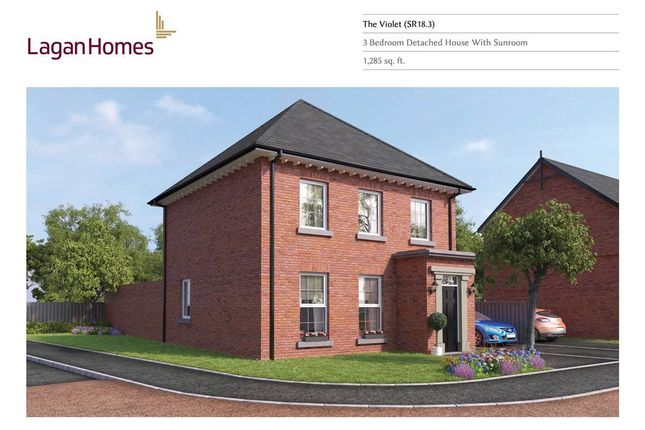 Thumbnail Detached house for sale in 12, Windrush Park, Antrim