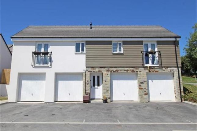 Thumbnail Property to rent in Bluebell Street, Plymouth