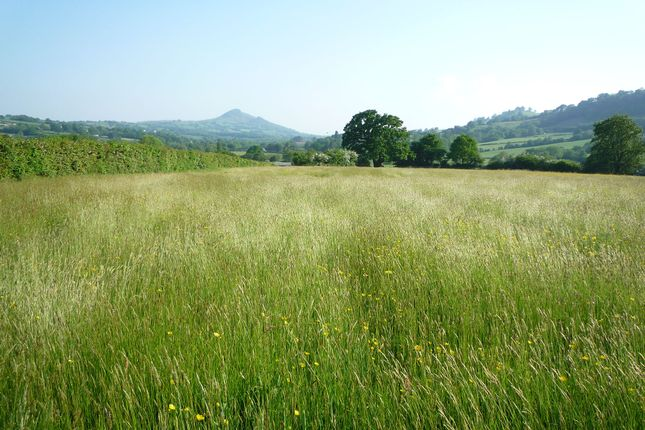 Land for sale in Walterstone, Herefordshire