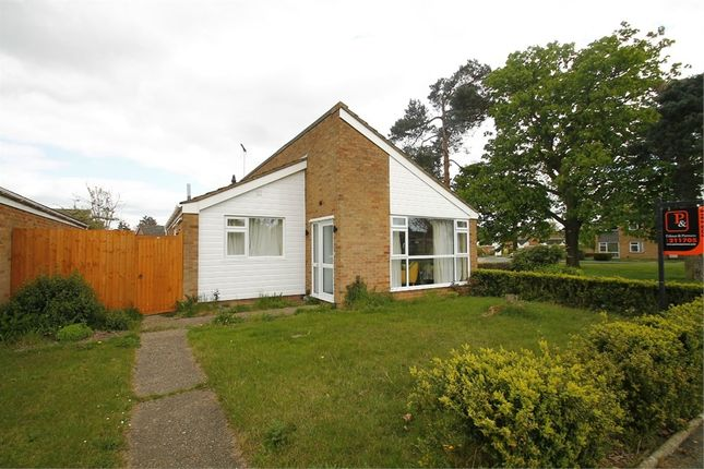 Thumbnail Detached house for sale in Crowland Close, Ipswich, Suffolk