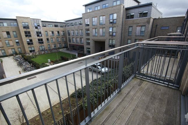 Thumbnail Flat to rent in Kingsley Walk, Cambridge