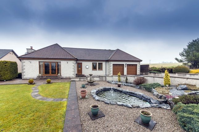 Thumbnail Bungalow for sale in Aultmore, Keith, Moray