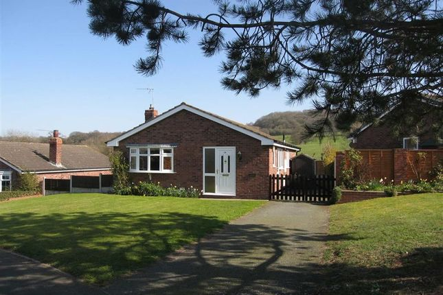 Thumbnail Detached bungalow to rent in Briar Close, Minsterley, Shrewsbury