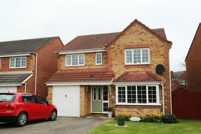 Thumbnail Detached house to rent in Irwell Close, Oakham