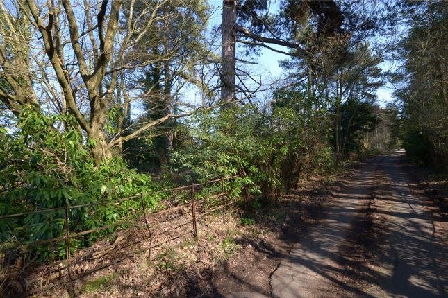 Thumbnail Land for sale in Brighton Road, Mannings Heath, Horsham