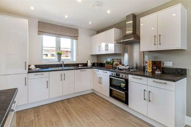 Thumbnail Detached house for sale in Plot 22 Orchard Green, Faversham, Kent