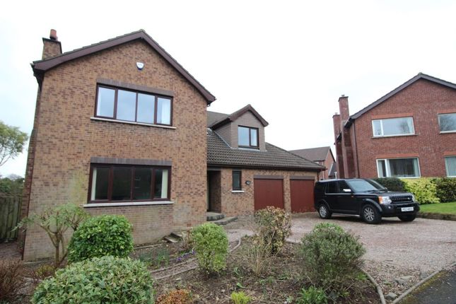 Thumbnail Detached house to rent in Beechfield Drive, Bangor