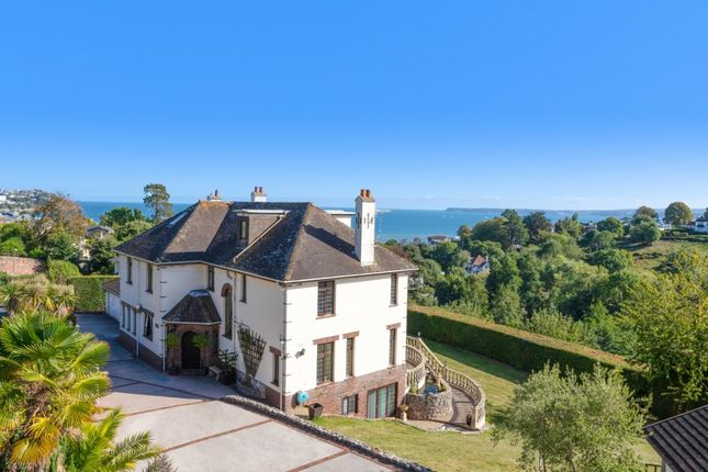 Thumbnail Detached house for sale in Meadow Road, Torquay