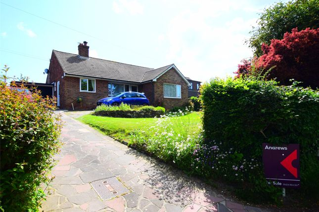 Thumbnail Detached bungalow for sale in Pottery Lane, Brede, East Sussex