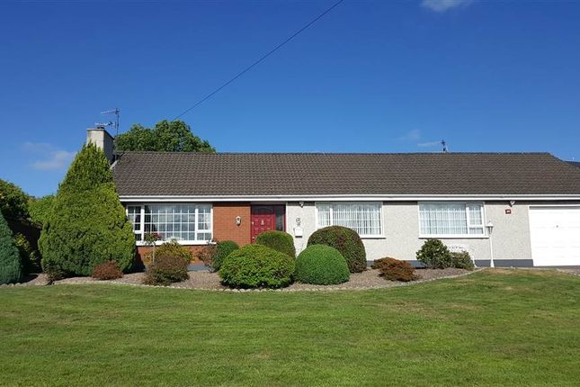 Thumbnail Bungalow for sale in Fullerton Road, Newry