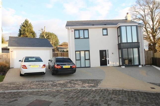 Thumbnail Detached house for sale in Pine Gardens, Plymouth