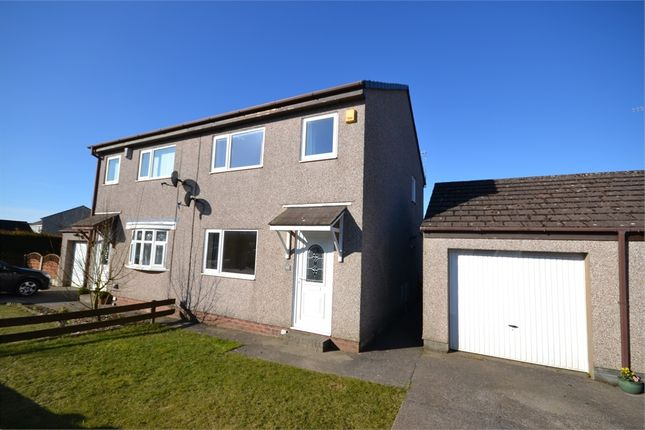 Thumbnail Semi-detached house to rent in Winchester Drive, Whitehaven, Cumbria