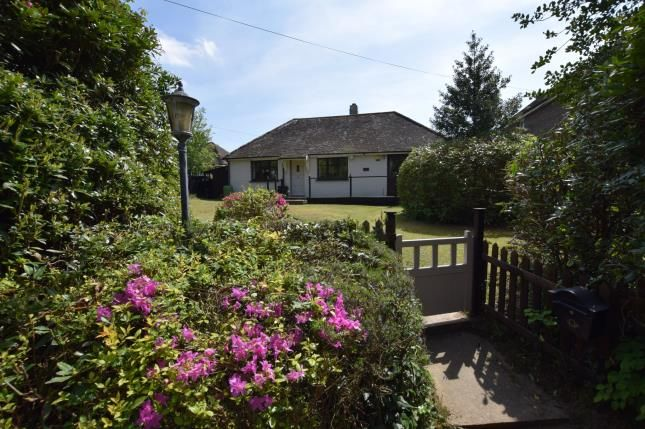 Thumbnail Bungalow for sale in Carters Corner, Hailsham, East Sussex