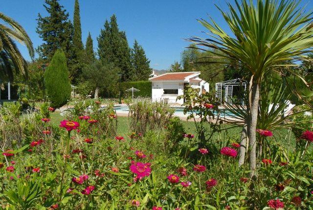 Garden of Spain, Málaga, Málaga, Puerto De La Torre