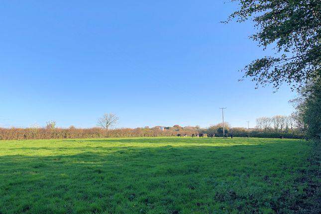 Thumbnail Land for sale in Development Site For 5 Dwellings, Bradworthy