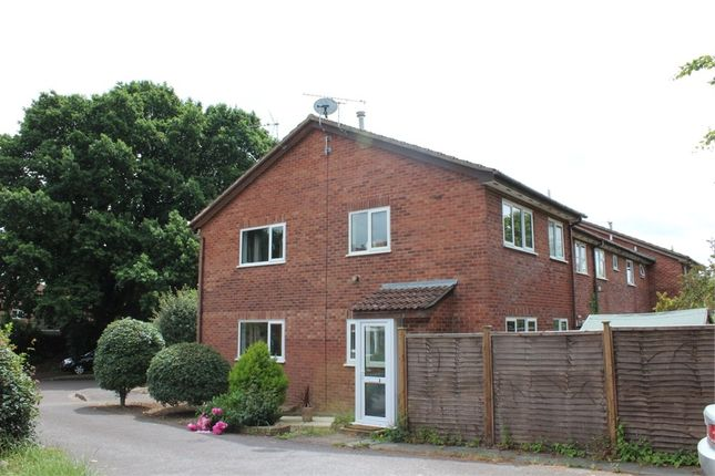 Thumbnail Semi-detached house to rent in Orchid Close, Taunton