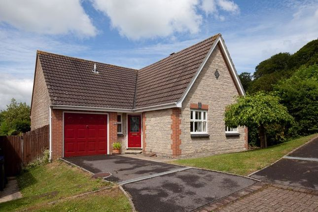 Thumbnail Detached bungalow for sale in Homefield, Mere, Warminster