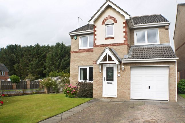 Thumbnail Detached house to rent in Grey Lady Walk, Prudhoe