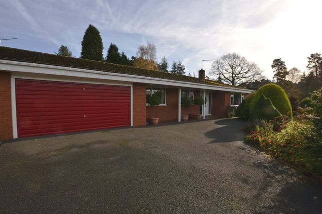 Thumbnail Detached bungalow for sale in Kestrel Drive, The Burntwood, Loggerheads