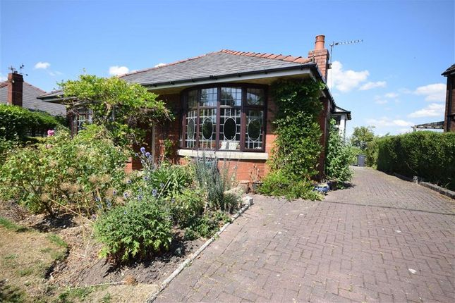 Thumbnail Detached bungalow to rent in Brindle Road, Preston, Lancashire