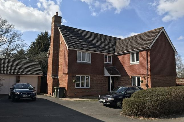 Thumbnail Detached house to rent in Upmill Close, West End, Southampton