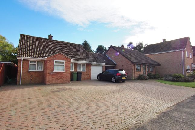 Thumbnail Detached bungalow to rent in High House Avenue, Wymondham, Norfolk