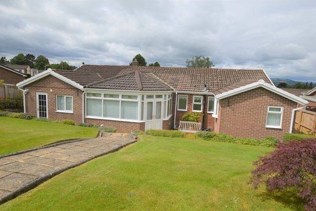 Thumbnail Detached bungalow for sale in Baliol Road, Stocksfield