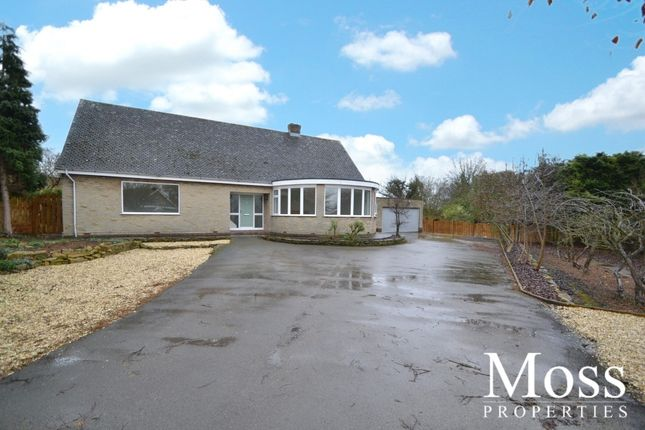 Thumbnail Detached bungalow to rent in Bannister Lane, Skelbrooke, Doncaster