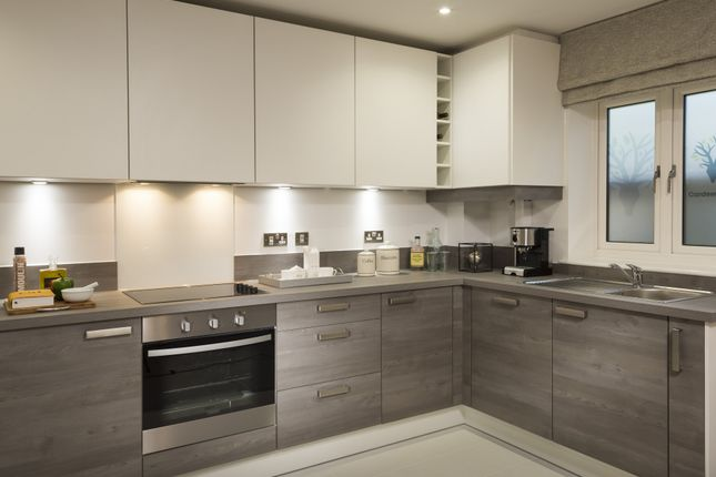 So Resi Sutton Kitchen