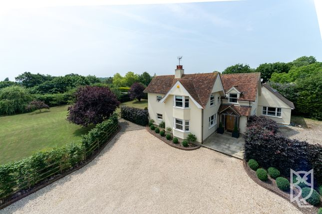 Thumbnail Detached house for sale in Little Baddow, Bassetts Lane, Chelmsford
