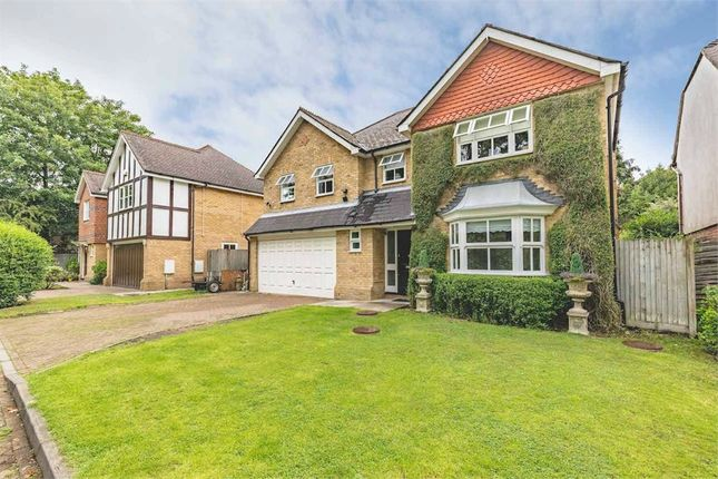Thumbnail Detached house for sale in Holm Grove, Hillingdon, Middlesex