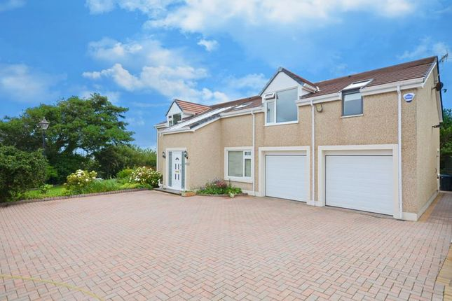Thumbnail Detached house for sale in Stocks Hill Rise, High Harrington, Workington