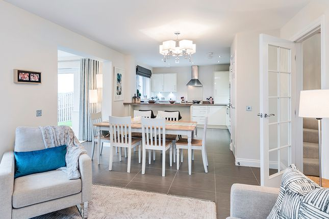 The Letham Show Home