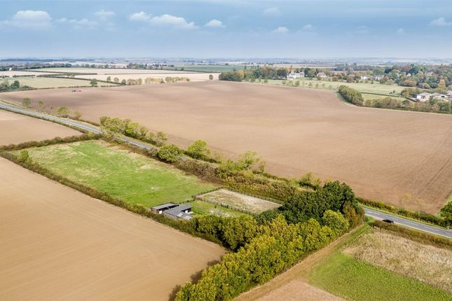 Thumbnail Detached house for sale in Kimbolton Road, Lower Dean, Huntingdon