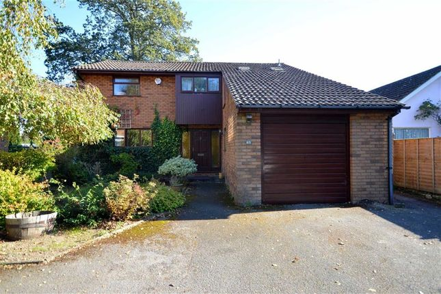 Thumbnail Detached house to rent in Bure Lane, Friars Cliff, Mudeford, Christchurch